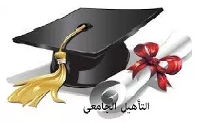 Qualification universitaire